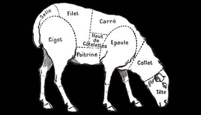 Dénomination des pièces de viande d'agneau